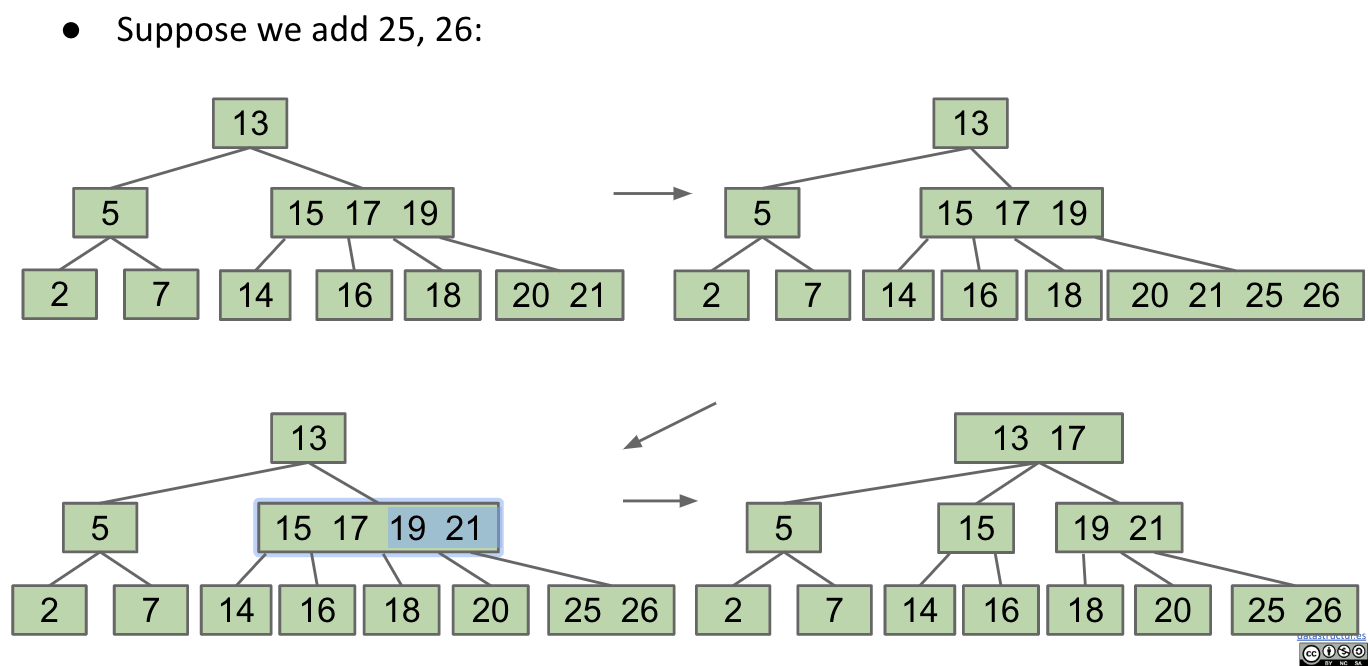 Practice - Add 25, 26 to the tree
