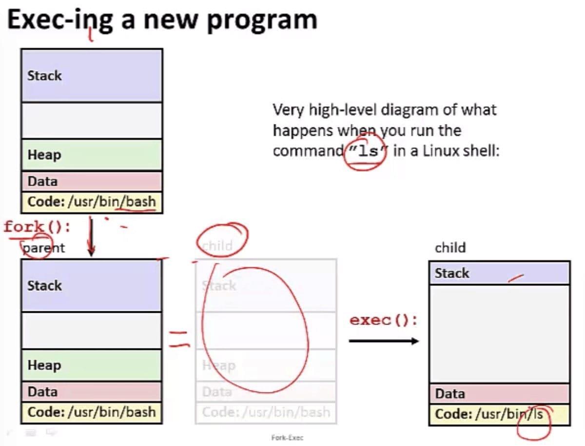Exec-ing a new program(CSE 351 - Processes, Video 4: Fork-exec)